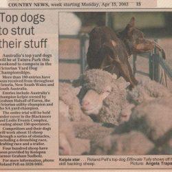 Newspaper 15th April 2002