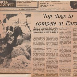 newspaper clipping 1990
